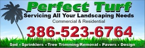 Perfect Turf Home Improvement, Repair & Maintenance Services